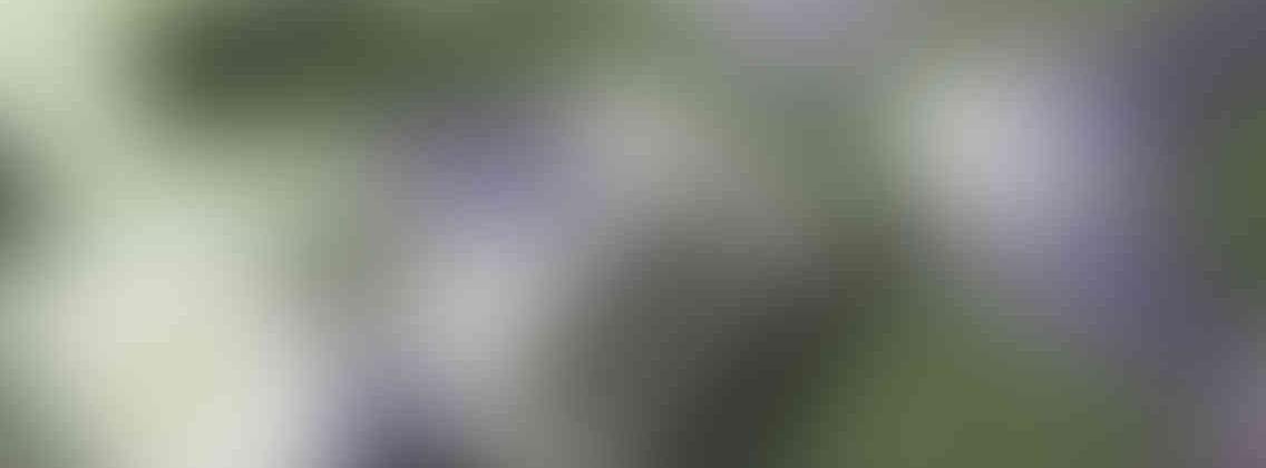 http://tcl-digitrade.com/wp-content/uploads/2013/03/relay_slide_3_v01-1136x420.jpg