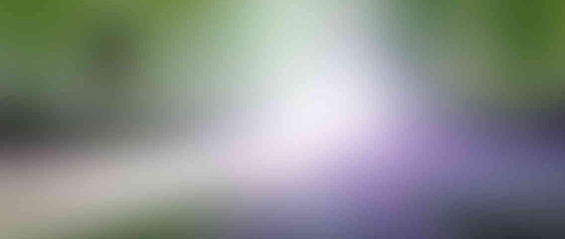 http://tcl-digitrade.com/wp-content/uploads/2013/03/standout_slide_1_v01-1136x480.jpg