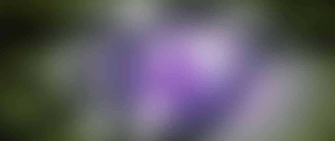 http://tcl-digitrade.com/wp-content/uploads/2013/03/standout_slide_3_v01-1136x480.jpg